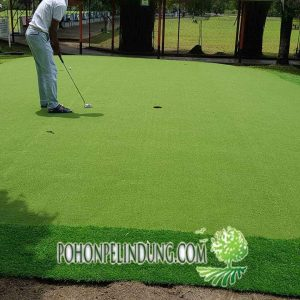 jual rumput sintetis golf