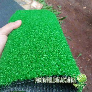jual rumput sintetis jenis jepanng